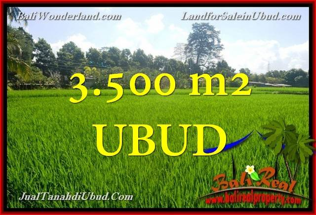 FOR SALE Beautiful PROPERTY 3,500 m2 LAND IN UBUD BALI TJUB660