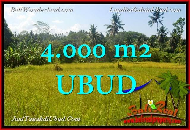 FOR SALE Beautiful 4,000 m2 LAND IN UBUD BALI TJUB661