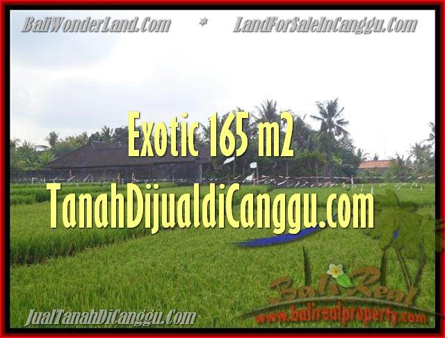 Beautiful PROPERTY Canggu1.650 m2 LAND FOR SALE IN BALI TJCG158