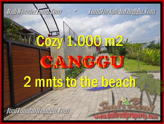 FOR SALE Exotic PROPERTY LAND IN Canggu Pererenan BALI TJCG161