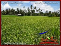 Beautiful UBUD BALI 3,900 m2 LAND FOR SALE TJUB658