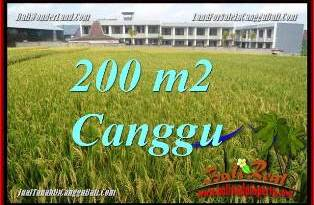 Magnificent CANGGU LAND FOR SALE TJCG229