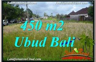 Magnificent 450 m2 LAND IN SENTRAL UBUD FOR SALE TJUB671