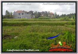 Affordable PROPERTY 2,994 m2 LAND FOR SALE IN SENTRAL UBUD BALI TJUB672
