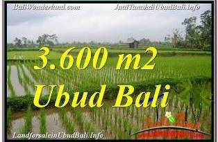FOR SALE Affordable PROPERTY 3,600 m2 LAND IN UBUD TEGALALANG TJUB673