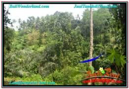 Beautiful LAND SALE IN UBUD BALI TJUB676