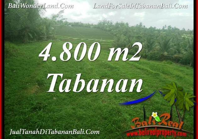 FOR SALE Beautiful 4,800 m2 LAND IN TABANAN TJTB387