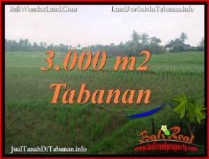 Beautiful PROPERTY 3,000 m2 LAND FOR SALE IN TABANAN BALI TJTB389