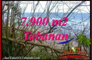 Beautiful LAND FOR SALE IN TABANAN BALI TJTB392