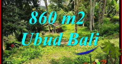 Exotic Property 860 m2 Land sale in Ubud Tegalalang TJUB691