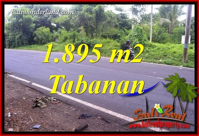 Magnificent Tabanan Bali 1,895 m2 Land for sale TJTB399