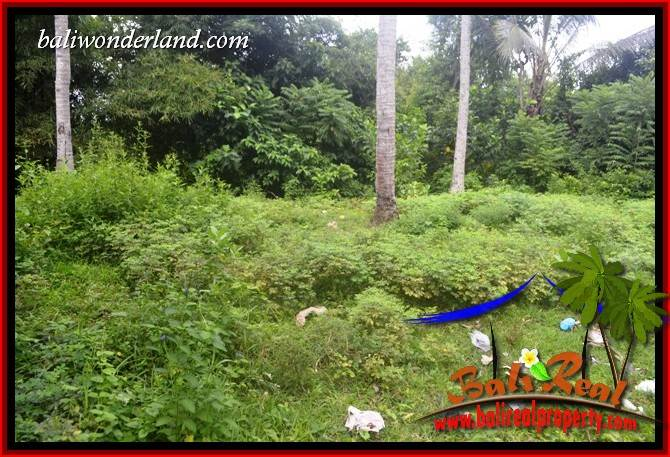Magnificent Property 1,895 m2 Land for sale in Tabanan Selemadeg Bali TJTB399