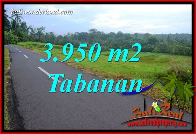 Magnificent Property 3,950 m2 Land in Tabanan Selemadeg for sale TJTB402