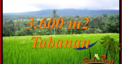 Exotic Property Land sale in Tabanan TJTB415