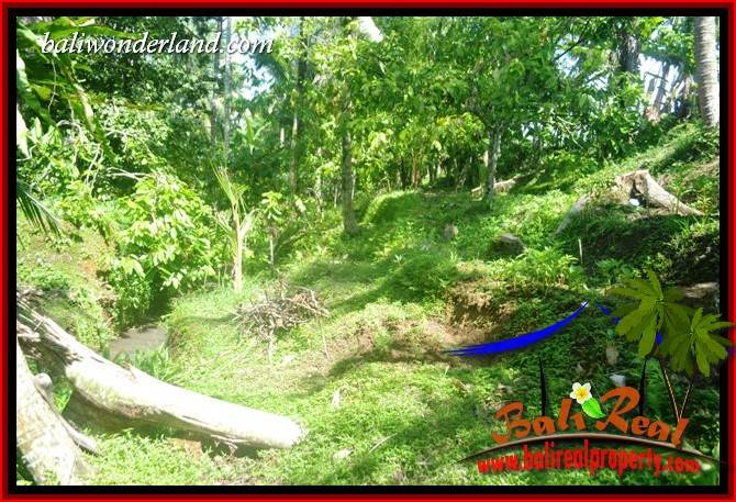 Affordable Property 4,100 m2 Land in Tabanan Penebel for sale TJTB417