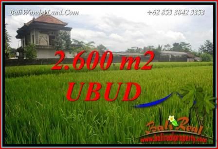 Beautiful Property Land for sale in Ubud Bali TJUB701