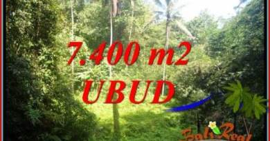 FOR sale Beautiful Property 7,700 m2 Land in Ubud Tegalalang TJUB734