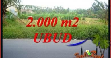 Affordable Property Land in Ubud for sale TJUB737