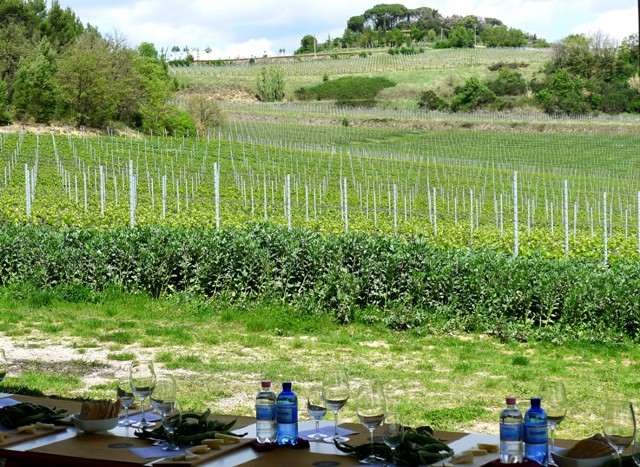 Terre Margaritelli Winery Umbria Italy