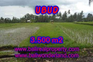 Land for sale in Bali, magnificent view Ubud Bali – TJUB395
