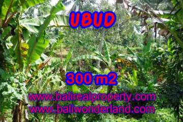Excellent Property for sale in Bali, land for sale in Ubud Bali – TJUB415