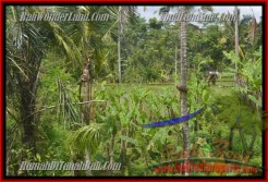 Magnificent PROPERTY 9,500 m2 LAND FOR SALE IN Ubud Payangan TJUB430