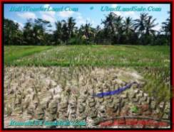 FOR SALE Beautiful 300 m2 LAND IN UBUD BALI TJUB500