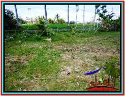 Exotic PROPERTY 490 m2 LAND IN Ubud Tampak Siring FOR SALE TJUB512