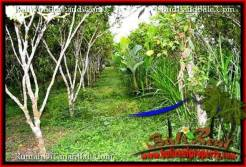 Magnificent LAND IN UBUD FOR SALE TJUB526