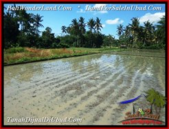 FOR SALE Affordable LAND IN Sentral Ubud BALI TJUB544