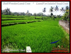 FOR SALE Exotic 500 m2 LAND IN UBUD BALI TJUB543