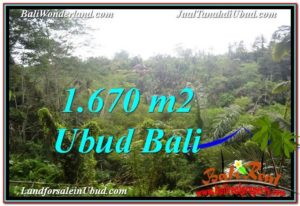 Exotic PROPERTY 1,670 m2 LAND FOR SALE IN Ubud Payangan TJUB569