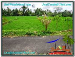 Exotic 2,900 m2 LAND IN UBUD BALI FOR SALE TJUB564