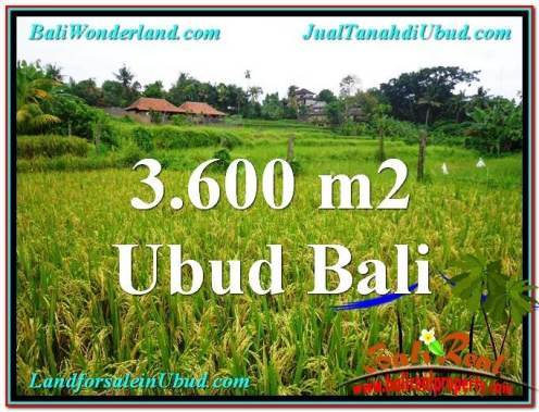 Exotic PROPERTY 3,600 m2 LAND FOR SALE IN Sentral Ubud TJUB566
