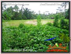 FOR SALE Exotic PROPERTY 3,300 m2 LAND IN UBUD BALI TJUB562