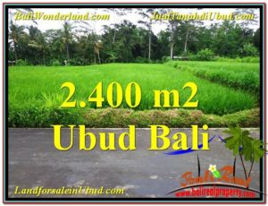 Affordable 2,800 m2 LAND SALE IN UBUD BALI TJUB563