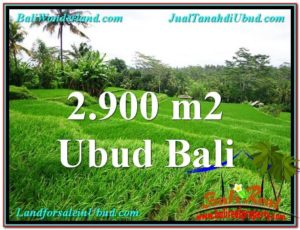 Beautiful LAND FOR SALE IN UBUD TJUB564