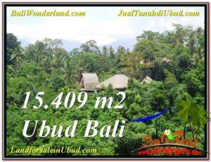 Exotic PROPERTY 15,490 m2 LAND FOR SALE IN Sentral Ubud TJUB568