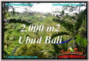 FOR SALE Exotic PROPERTY 2,000 m2 LAND IN Ubud Payangan TJUB573