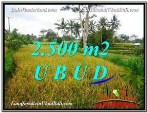 Exotic PROPERTY 2,500 m2 LAND FOR SALE IN Ubud Pejeng TJUB577
