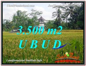 FOR SALE Exotic 3,500 m2 LAND IN UBUD TJUB596