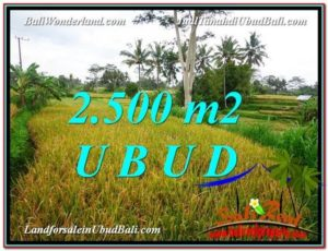 Affordable LAND SALE IN Ubud Pejeng BALI TJUB577