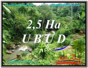 FOR SALE Exotic LAND IN Sentral Ubud BALI TJUB579