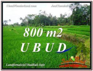 Beautiful LAND FOR SALE IN UBUD TJUB581
