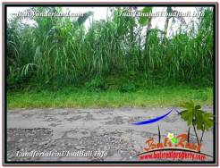 Affordable PROPERTY LAND IN UBUD FOR SALE TJUB592