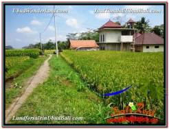 Affordable PROPERTY Ubud Tegalalang 2,700 m2 LAND FOR SALE TJUB595