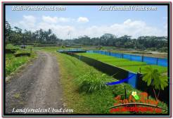 FOR SALE Exotic PROPERTY LAND IN UBUD TJUB631