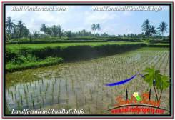 Exotic PROPERTY 3,200 m2 LAND FOR SALE IN Ubud Payangan TJUB628