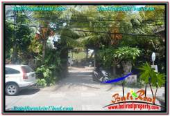 Affordable 600 m2 LAND FOR SALE IN UBUD BALI TJUB644