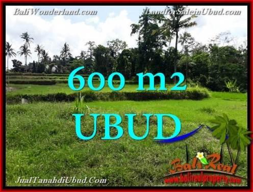 Affordable 600 m2 LAND FOR SALE IN UBUD BALI TJUB657